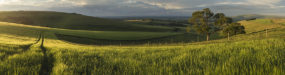 Stunning panorama landscape South Downs countryside in Summer