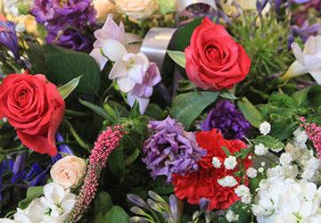 flowers-IMG_3503