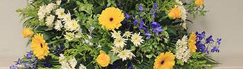 flowers-IMG_351-100